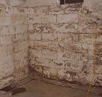 Peeling, Chipping, Basement Wall Coatings in Osage